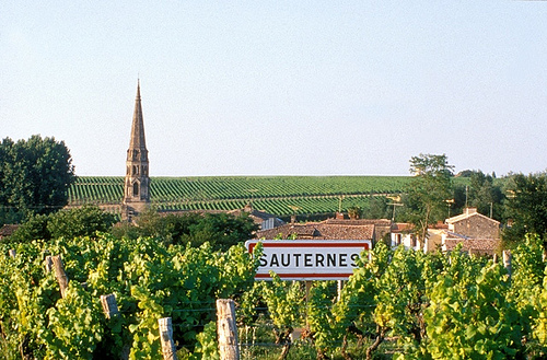 苏玳 Sauternes