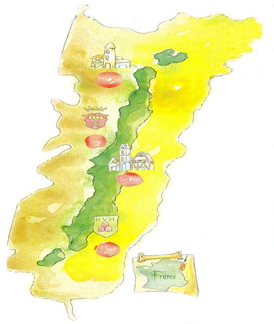 阿尔萨斯葡萄酒行业协会