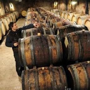 保加利亚将举办第四十届世界葡萄与葡萄酒大会