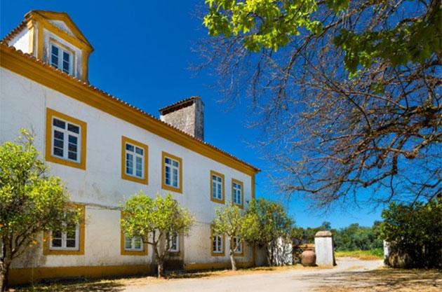 格兰姆波特酒庄主收购杜罗河产区以外葡萄园