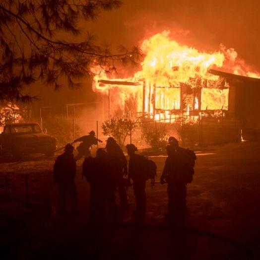 加州大火火势持续蔓延 知名葡萄园受影响