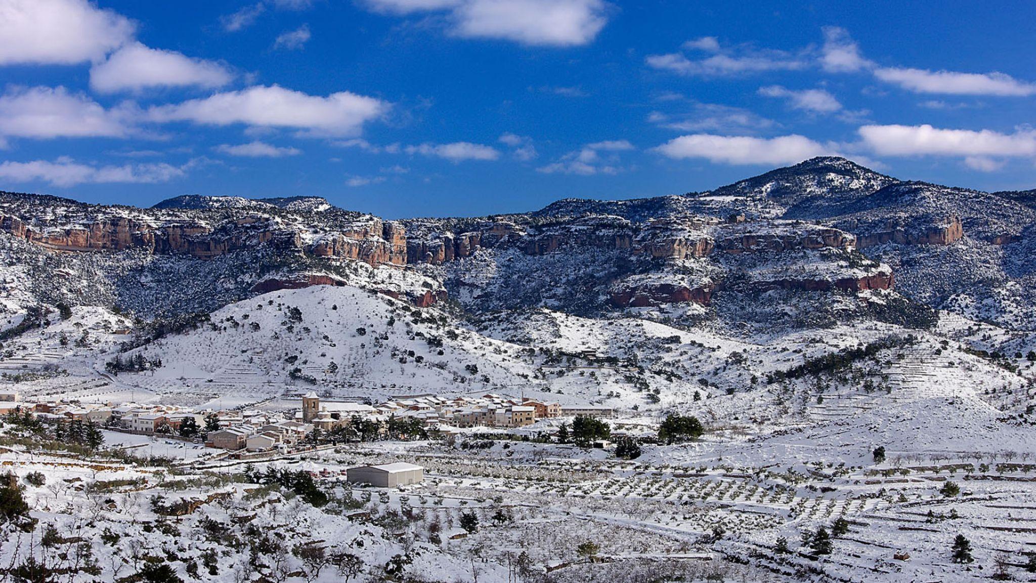 圣山下的Priorat,板岩与老藤谱写的史诗