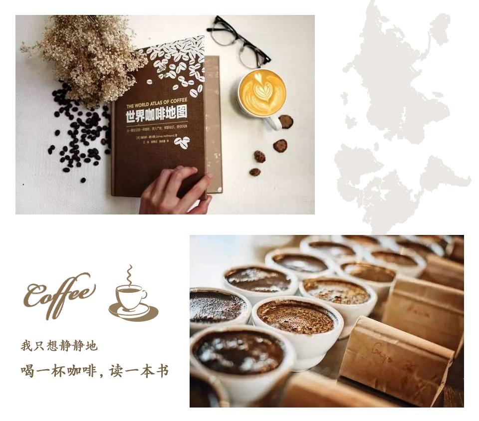 《世界咖啡地图》 原著作者签名版 预售 赠naka拎袋