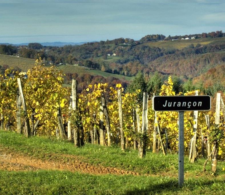 Didier dagueneau les jardins de babylone for Jardin de babylone wine
