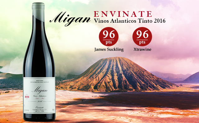 【火山酒进阶】Envinate 'Migan' Vinos Atlanticos Tinto 2016