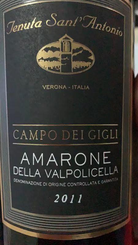 圣安东尼奥凯普地吉利阿玛罗尼干红Tenuta Sant Antonio Campo dei Gigli Amarone della Valpolicella