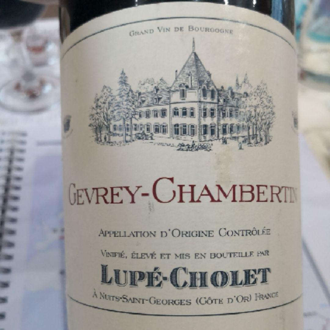 卢普绍莱吉沃干红Lupe Cholet Gevrey Chambertin