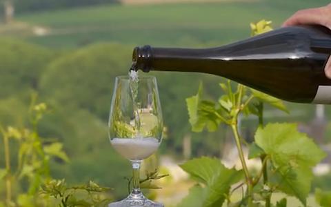 產區探秘:法國·香檳
