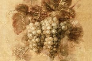 凉州牧,冰雪丸,魏天子?这些竟然都是酿酒葡萄品种名称!