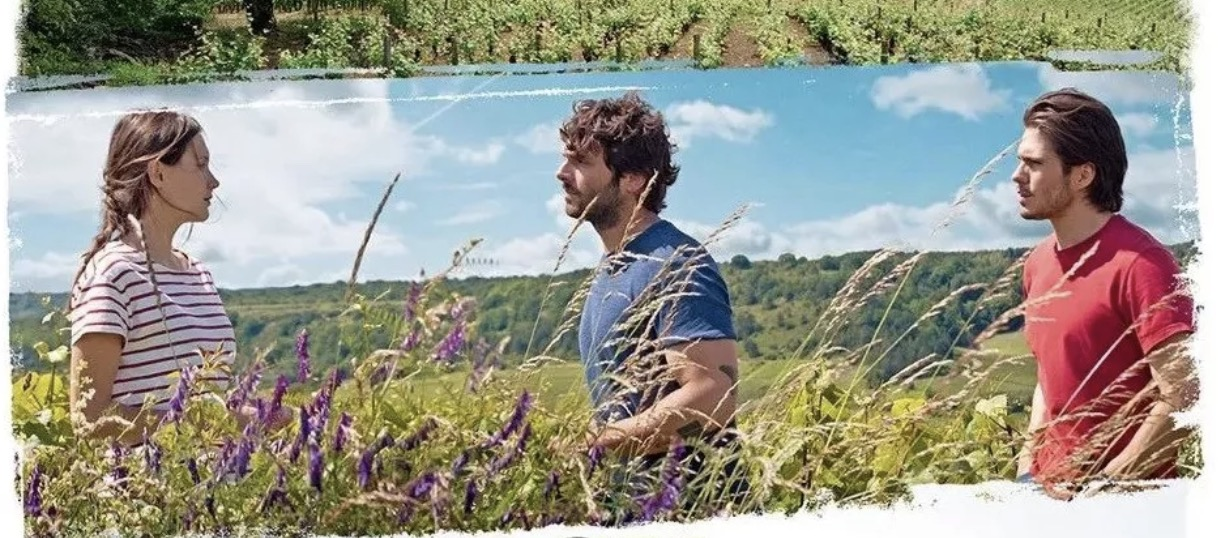 2017葡萄酒佳作,法国人终于把勃艮第拍成了电影!