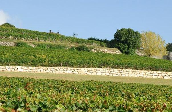 嘉芙丽庄园Chateau La Gaffeliere