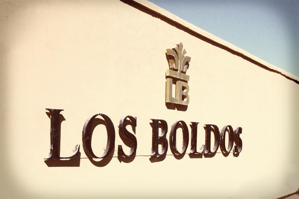 洛宝多庄园Chateau Los Boldos