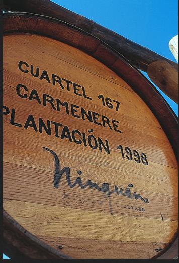 云顶山酒庄Ninquen Winery