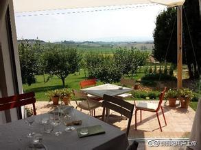 阿雯诺尼斯酒庄Avignonesi