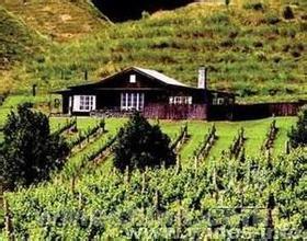 阿奎尔酒庄De Aguirre Bodegas Vinedos