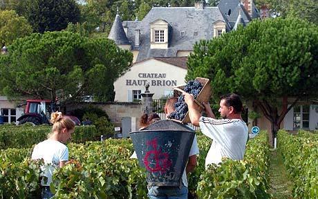 侯伯王酒庄Chateau Haut-Brion