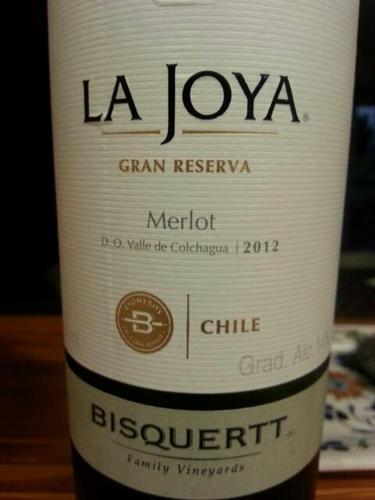 彼斯克提菊雅园特级珍藏梅洛干红Vina Bisquertt Casa La Joya Gran Reserva Merlot