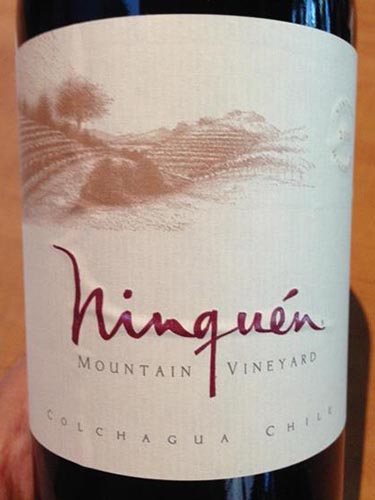 云顶山空加瓜干红Ninquen Mountain Vineyard Colchagua Valley