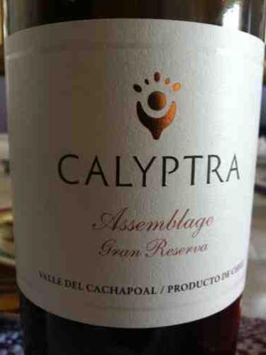克利皮特拉艺术品珍藏干红葡萄酒Calyptra Assemblage Gran Reserva